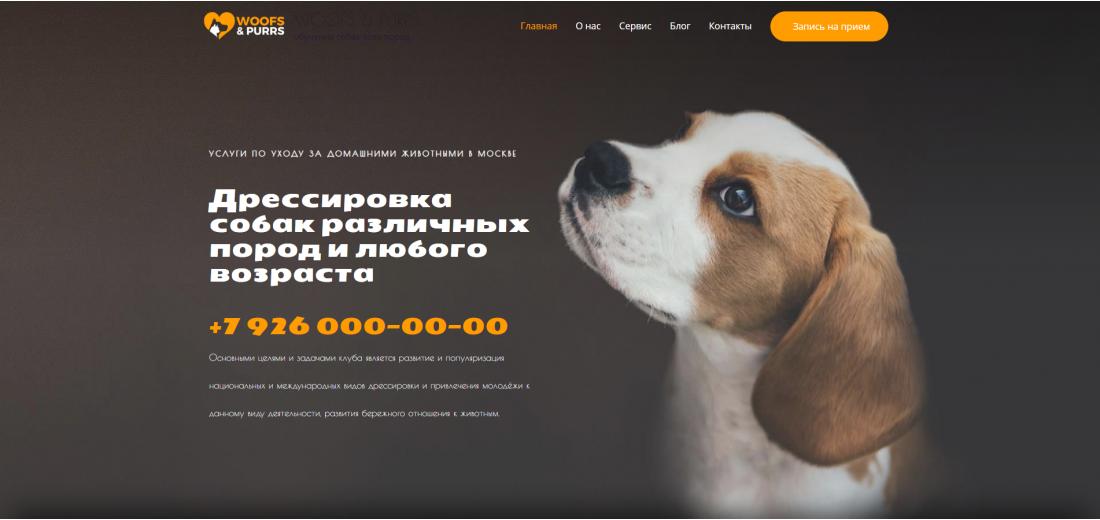 Готовый сайт - Центр подготовки для собак на CMS Wordpress