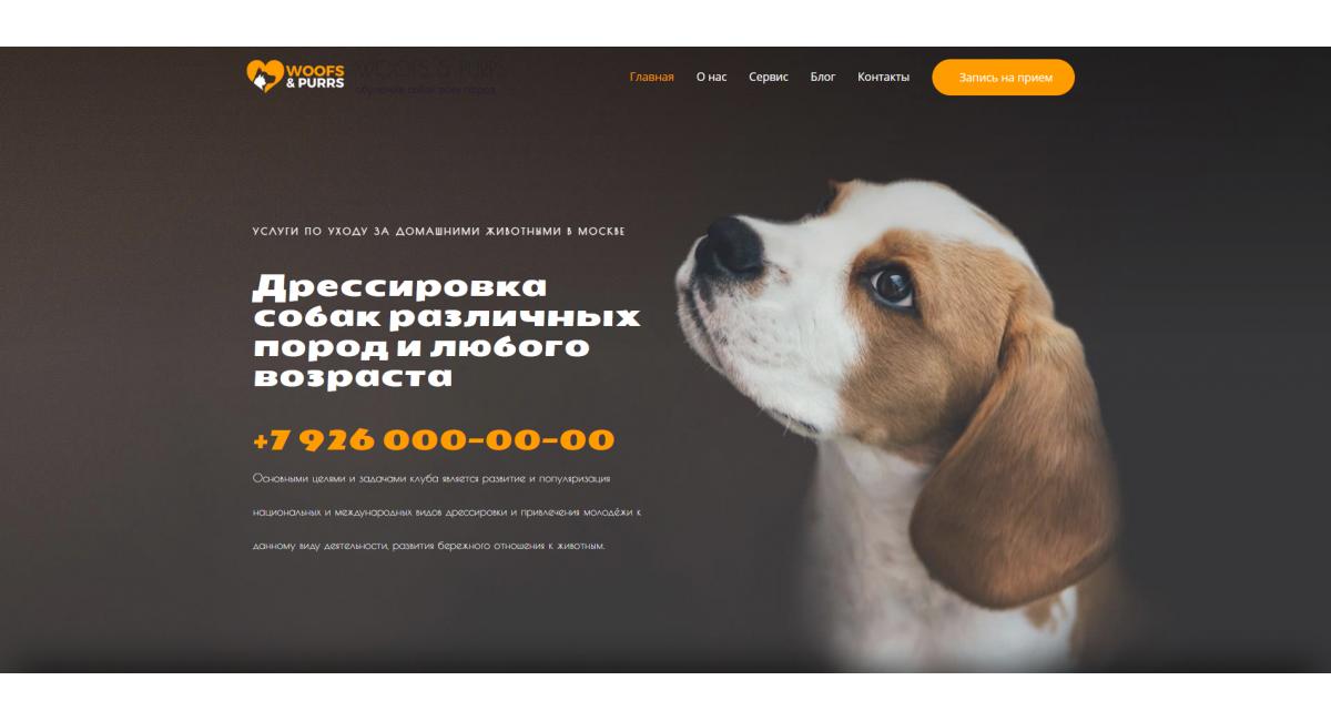 Подготовительный центр для собак