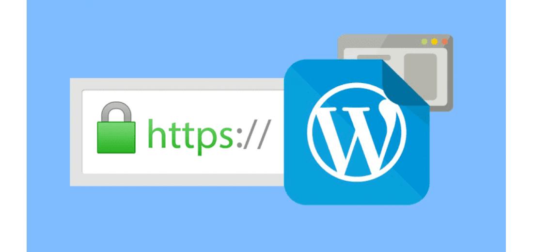 Настройка безопасного соединения по HTTPS и SSL сертификата