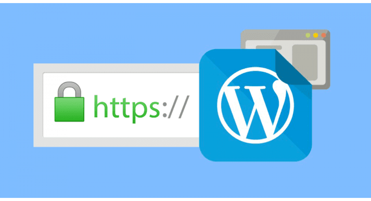 Переход на HTTPS в WordPress